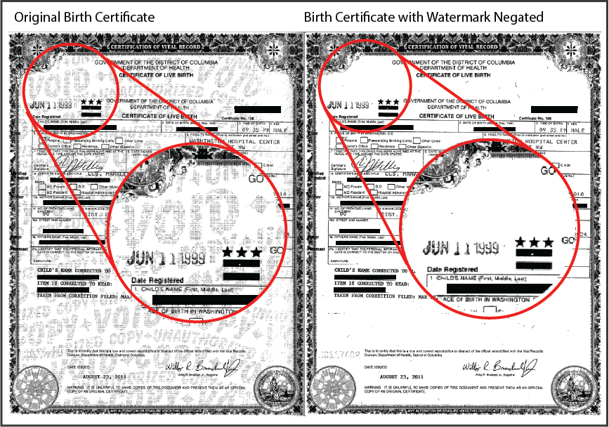 Negated Birth Certificate v04